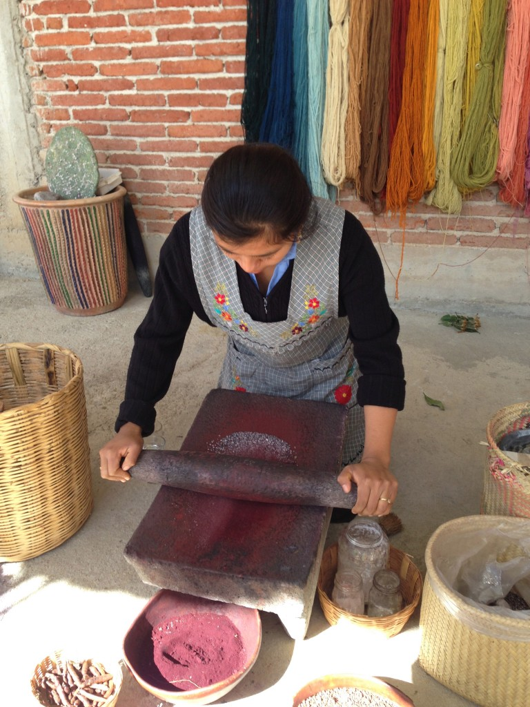Making the dye from the cochinea bug